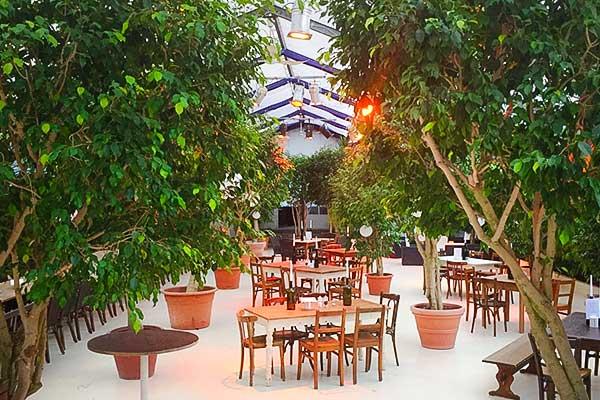 Sinnesfreunde Catering München Hochzeit Party Privat Mobiliar Deko Pflanzen Vintage