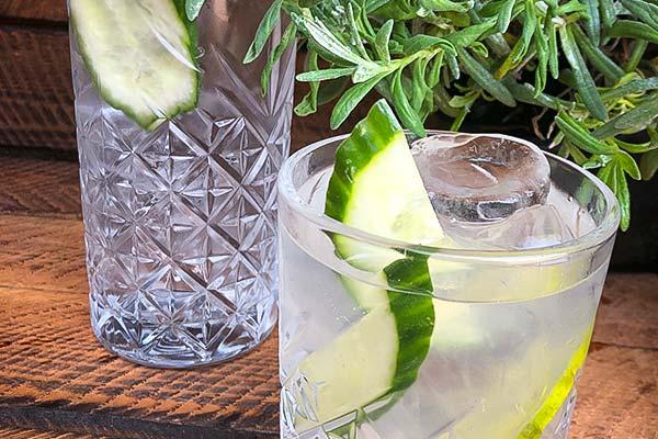 Sinnesfreunde Catering München Getränke Fullservice Gin